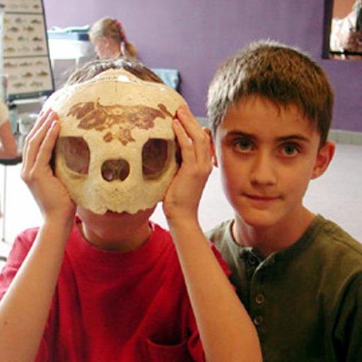 Camp skulls