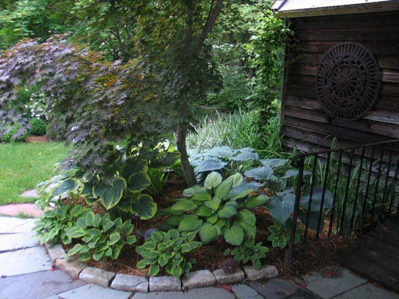 Dugies Garden
