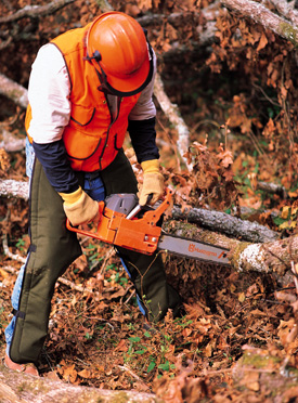 Husqvarna Chainsaw Safety Training Class