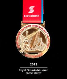 STWM medal, 2013