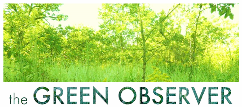 The Green Observer Magazine