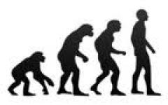 Evolution Is Biologically Impossible