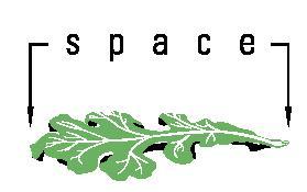 Space Park Logo