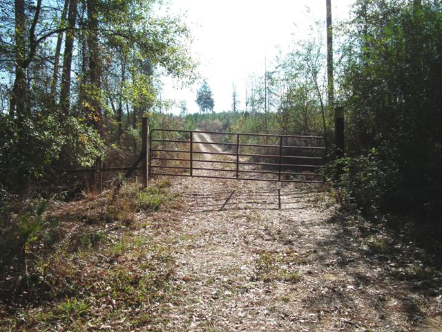 Timber & Hunting Land 2012