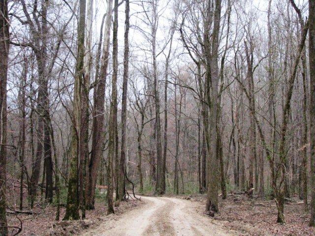 Techeva Valley 718 acres Yazoo County