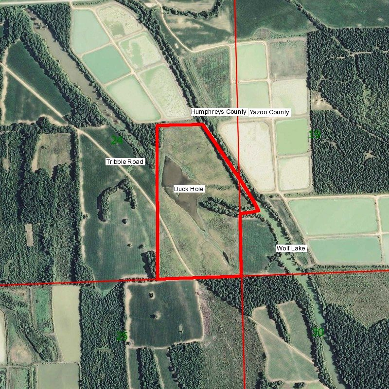 New Hunting Properties For Sale