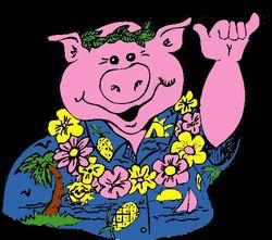 Hawaiin pig