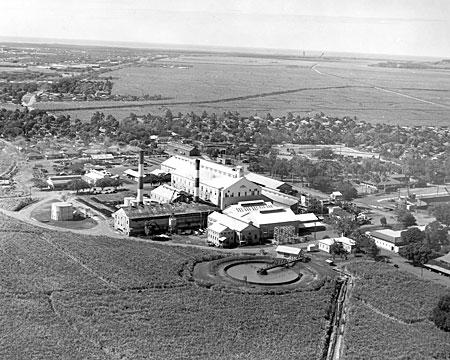 Ewa Plantation