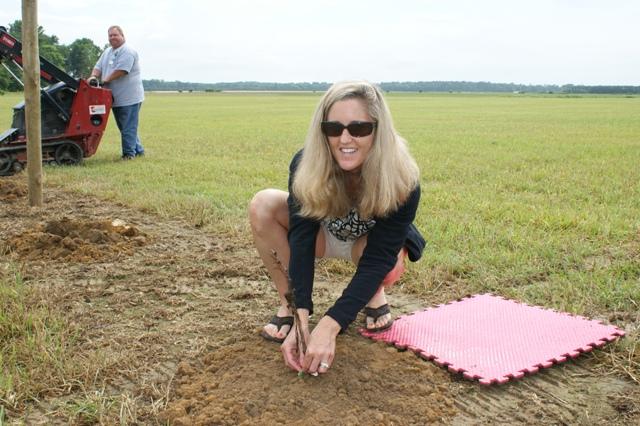Planting VV 2011