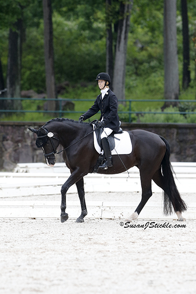 Margaret McIntosh and Rio Rio (Rheinland Pfalz-saar International), owned by Margaret McIntosh earned the USEF Reserve National Championship. Photo copyright SusanJStickle.com. Photo is taken in Gladstone, NJ at the 2014 USEF Para-Equestrian Dressage National Championship/ Selection Trial for the Alltech FEI World Equestrian Games™ (WEG).