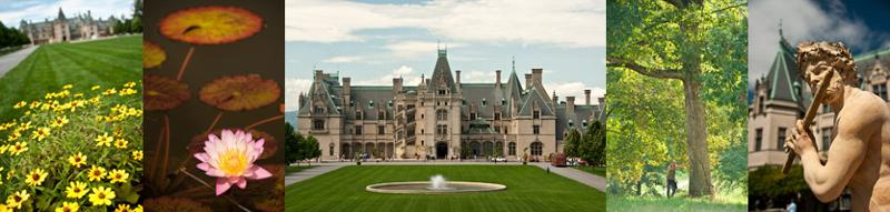 Biltmore Estate Photo Tour