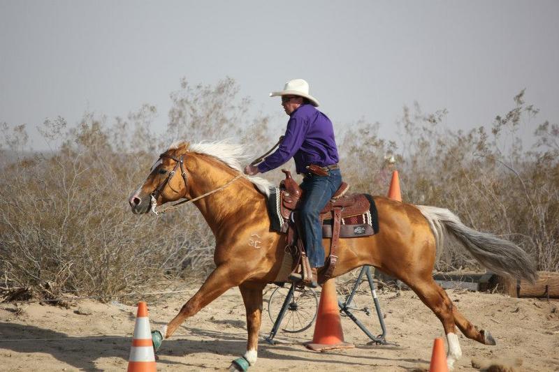 NBR EXCA Race Free Ride Tom Ryan / Genuine 007