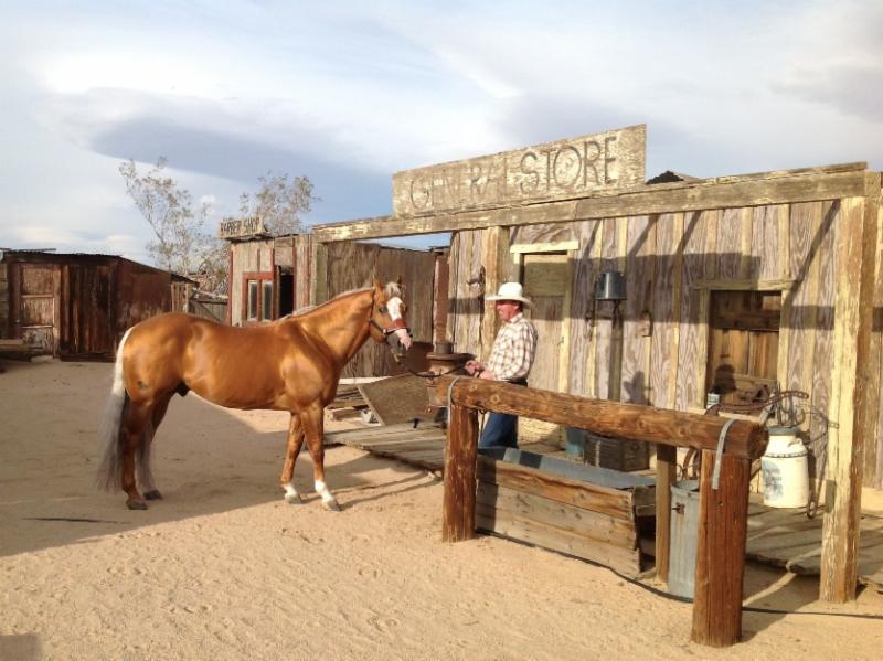 Cameron Ranch Photo Shoot