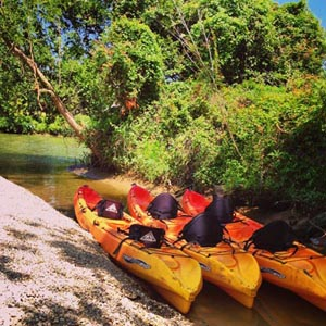 kayaks at TBF
