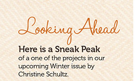 Looking Ahead, here is a sneak peak of one of the projects in our upcoming winter issue by Christine Schultz.