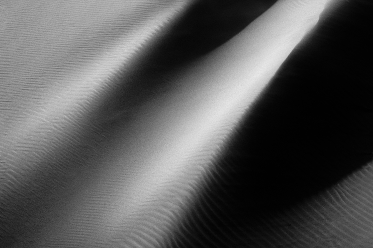 Dunes of Nude No. 39