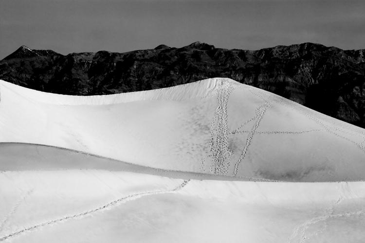 Footprints on Dune