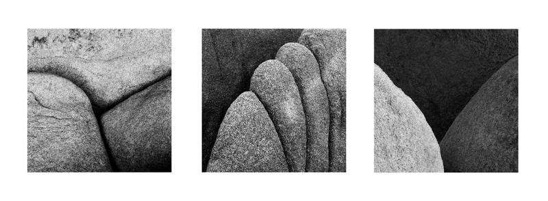 Joshua Tree Rock Detail Tryptic