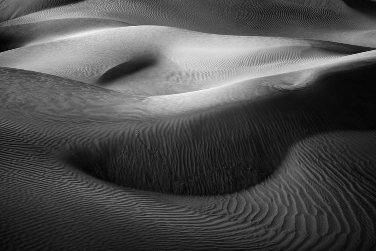 Dune Detail No 43