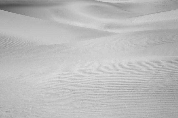 Dunes of Nude No. 82