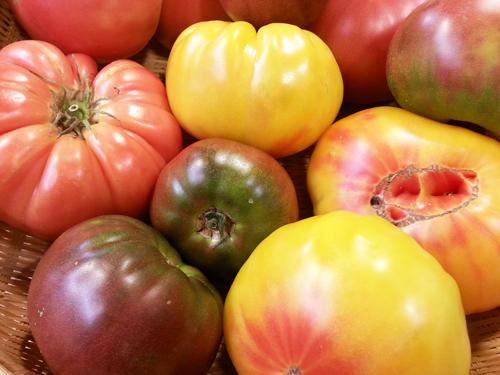 Heirloom Tomatoe