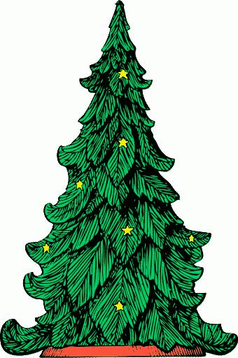 UMM Christmas Trees