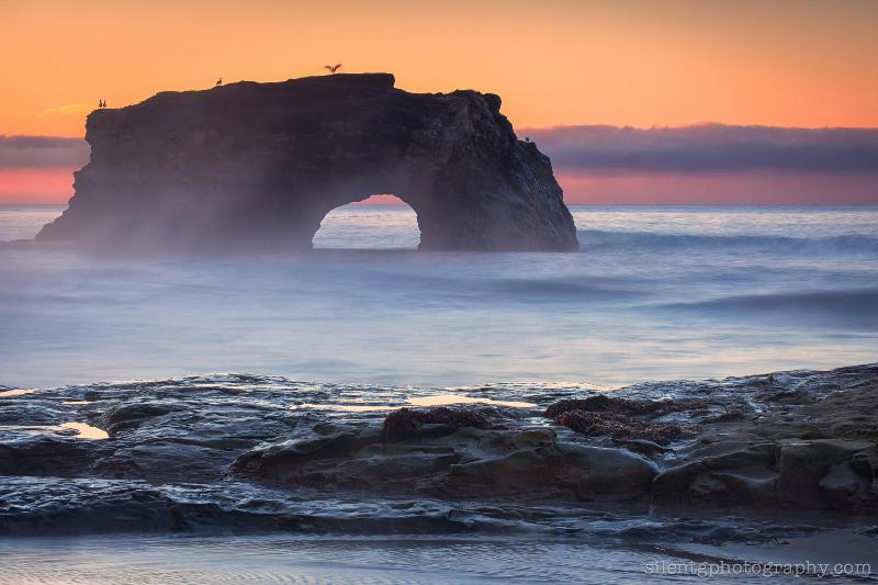 Photo at Natural Bridges in Santa Cruz by Mark G.