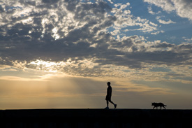 Man and Dog, North Beach Chicago