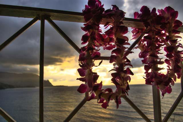 Hawaiian Leis