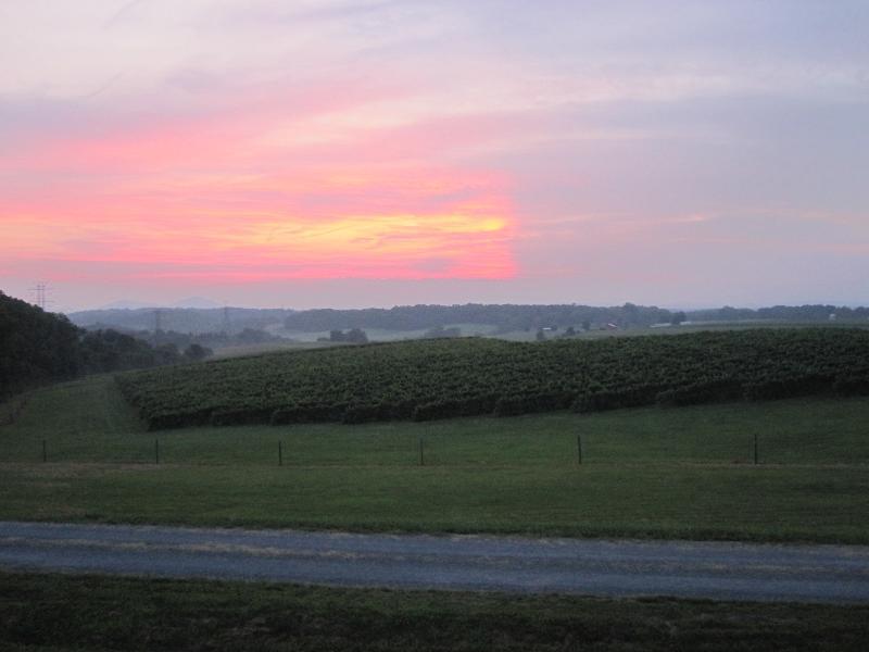 sunset br