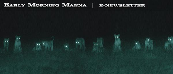 manna210-blast_01