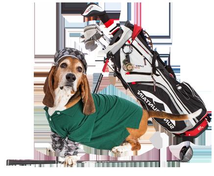 Seymour Golfer