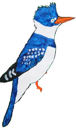 Kingfisher Artwork