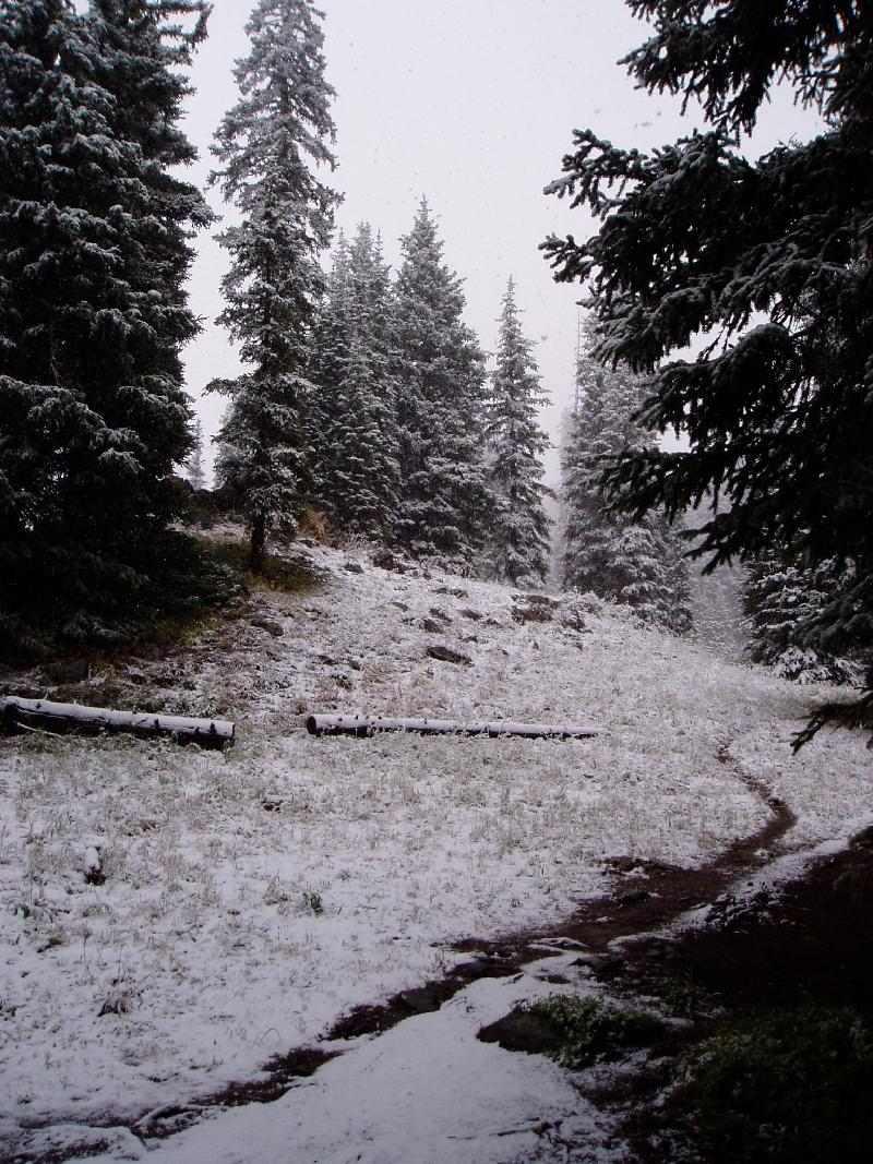 Winter Mtn Trail CO