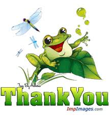 Thank You Frog