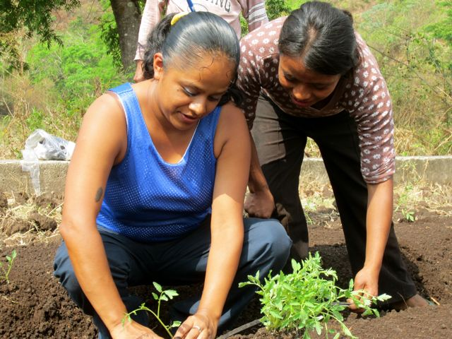 Planting in Guatemala