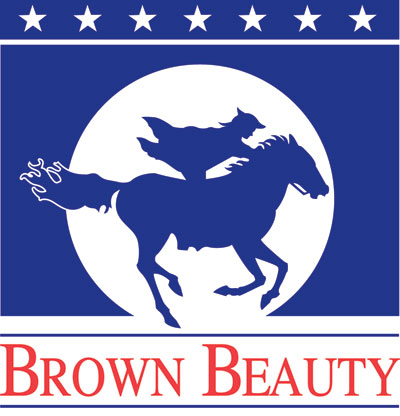 New Arrivals at Brown Beauty Equestrian!