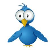 TR Twitterbirdeyes
