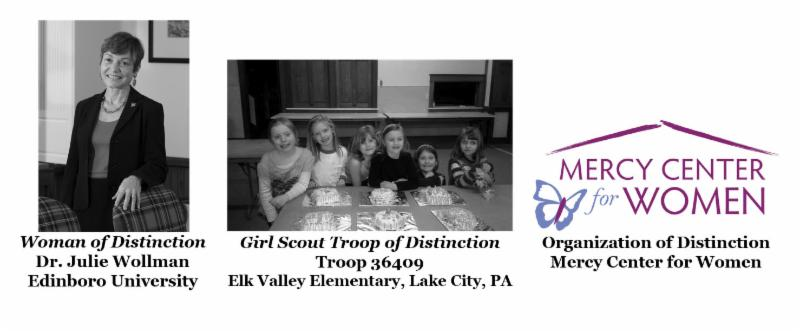 2014 girls scouts western pennsylvania awards of
