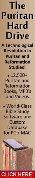 Puritan-Hard-Drive-120x600-B