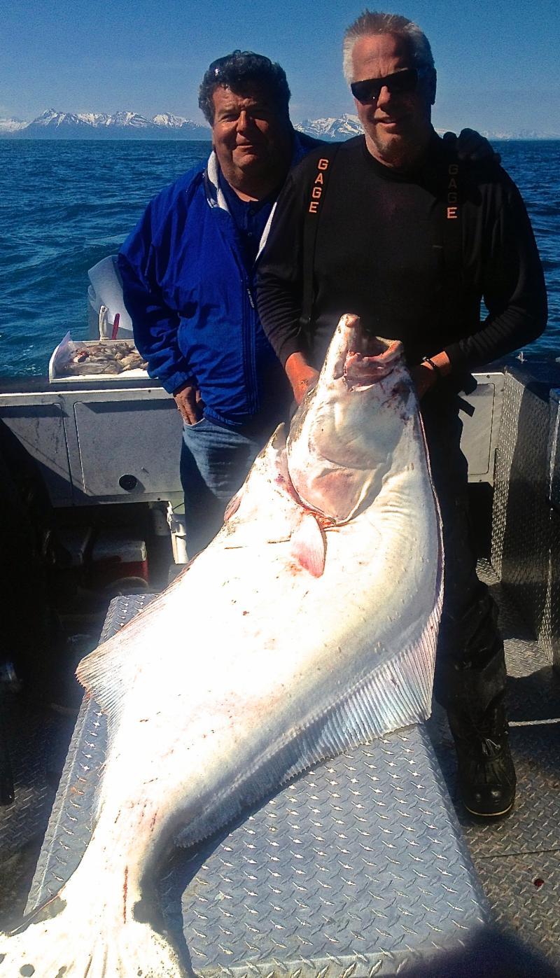 Season 2013 Newsletter Alaska Fishing Lodge