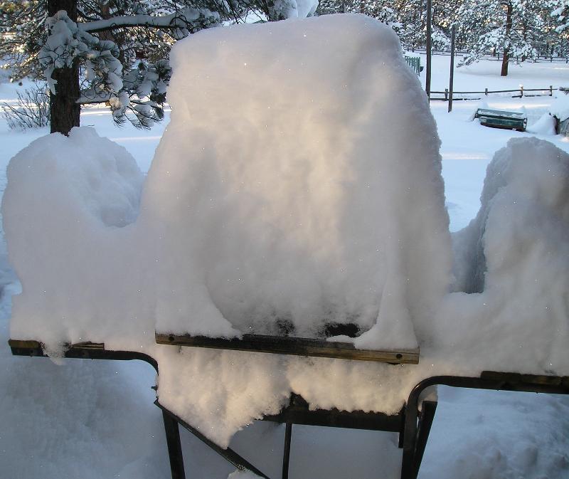 Snowed in BBQ