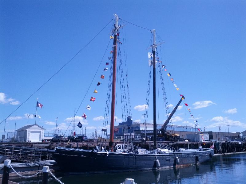 Ernestina is ready to welcome the Morgan
