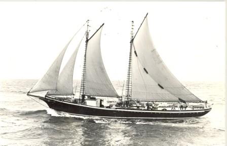 Arrival in Newport 1982