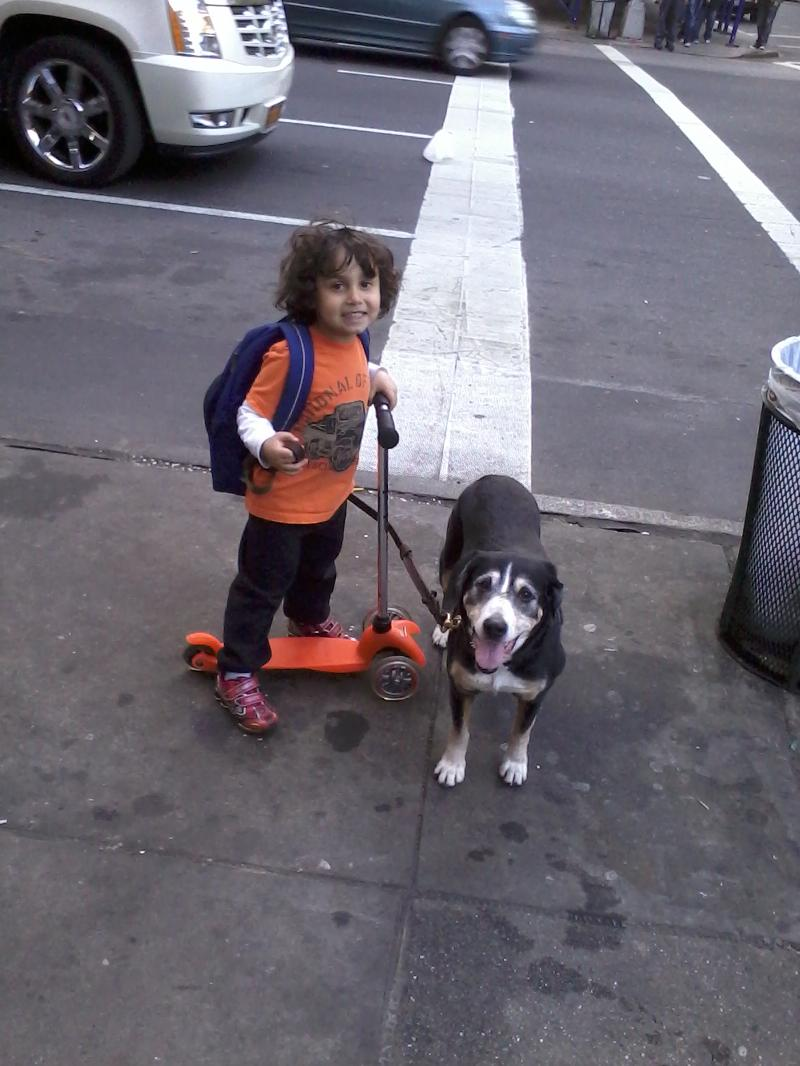 a small boy, a good dog and a scooter