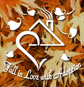 fall in love with adoption