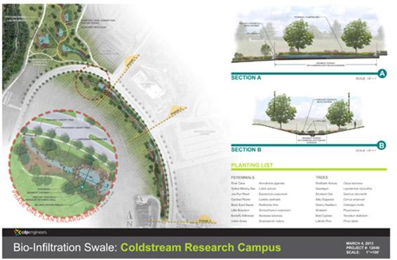 Bio-Swale Project