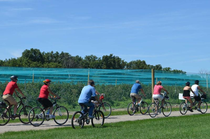 Wine Trail Rides / Windsor Eats