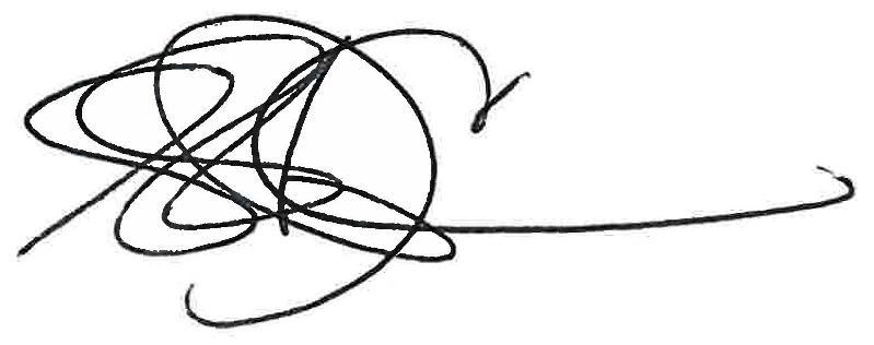 Suzanne's Signature
