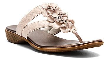 87b5305c6f8 Shoe Shak SUMMER SALE